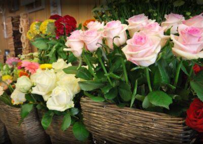 Rose fleuriste Vihiers