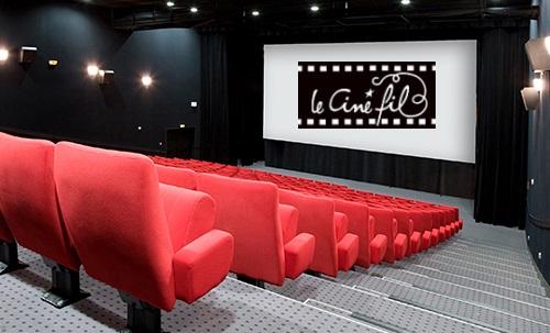 cinema-vihiers2